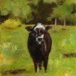 Logan County Cow, oil on canvas framed $300 200