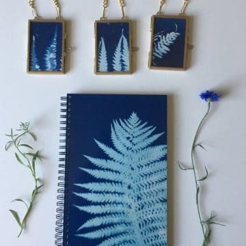 Sunprinting with Traditional & Alternative Techniques with Emie Hughes