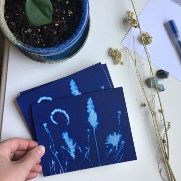 Celebrating Autumn Through Cyanotypes with Emie Hughes